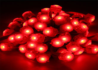 China Waterproof 0.25W 20mm Red Pixel Led Lighting 12 Volt LED Light supplier
